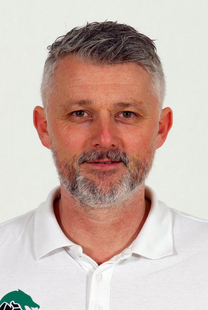 Nikola Hajdin